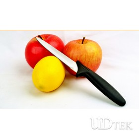 Stainless steel fruit knife plastic handle paring knife UD18008